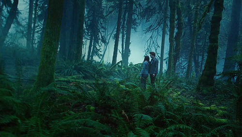oh the misty forest..where it all began